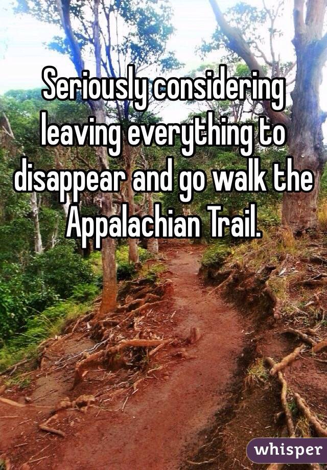 Seriously considering leaving everything to disappear and go walk the Appalachian Trail.