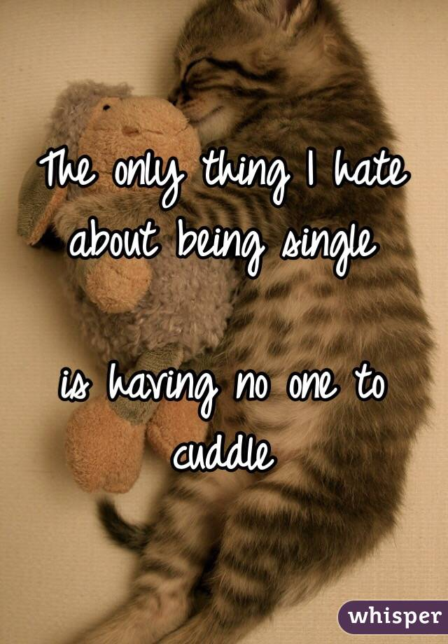 The only thing I hate about being single   is having no one to cuddle