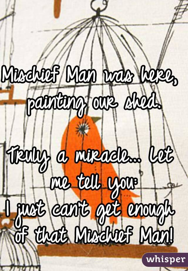 Mischief Man was here, painting our shed.  Truly a miracle... Let me tell you: I just can't get enough of that Mischief Man!