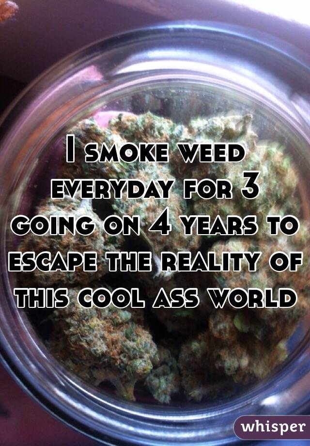 I smoke weed everyday for 3 going on 4 years to escape the reality of this cool ass world