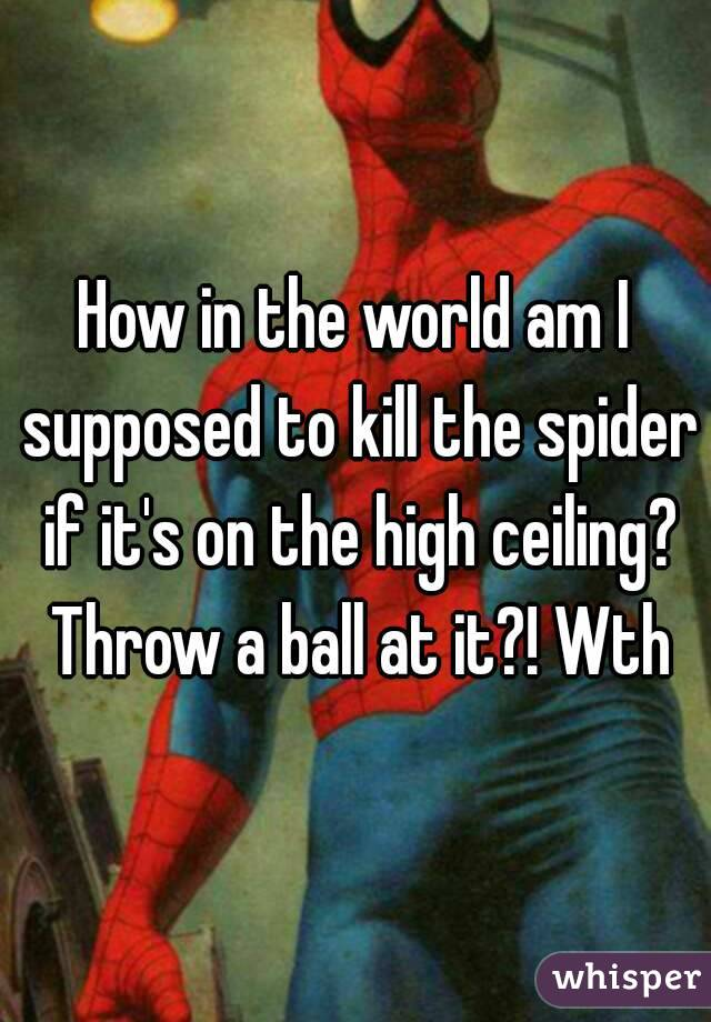 How in the world am I supposed to kill the spider if it's on the high ceiling? Throw a ball at it?! Wth