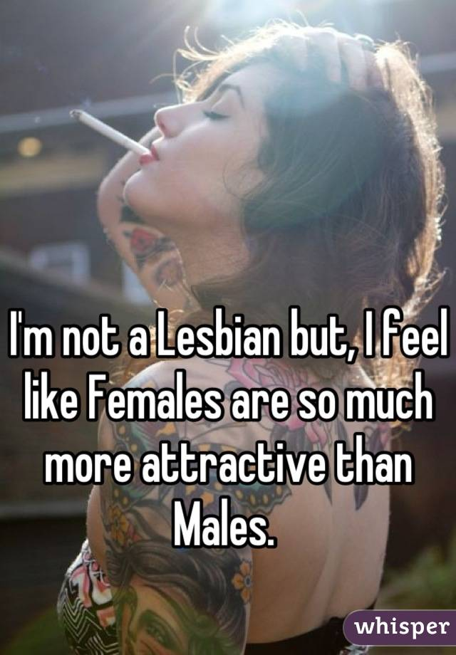 I'm not a Lesbian but, I feel like Females are so much more attractive than Males.