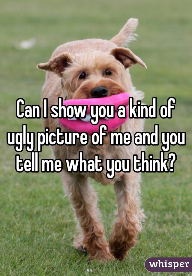 Can I show you a kind of ugly picture of me and you tell me what you think?