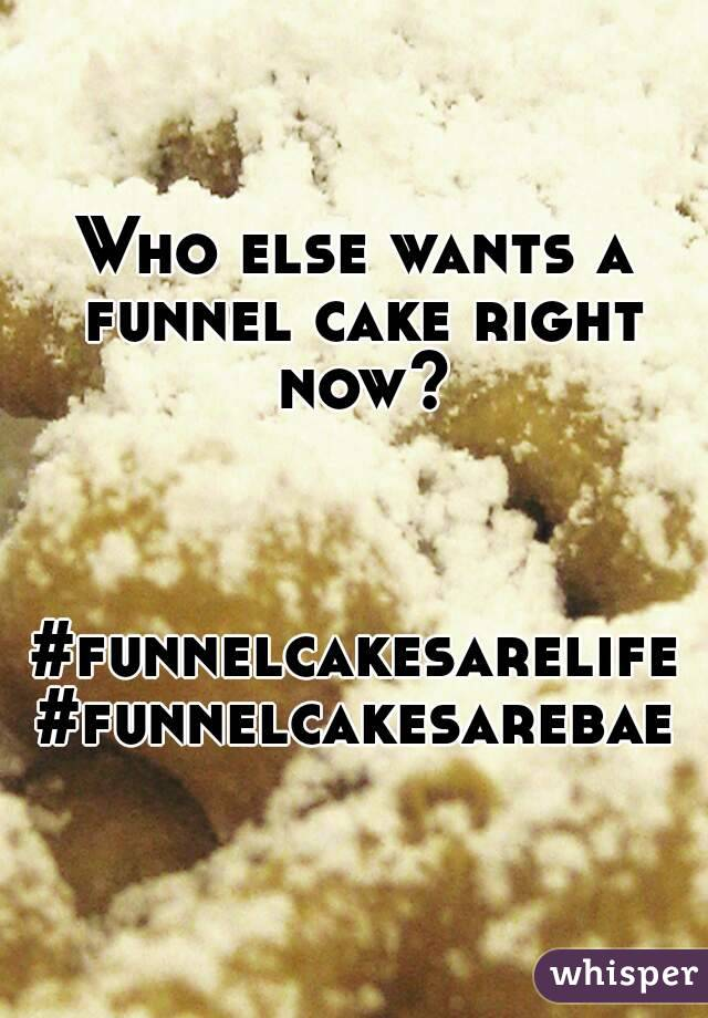 Who else wants a funnel cake right now?    #funnelcakesarelife #funnelcakesarebae