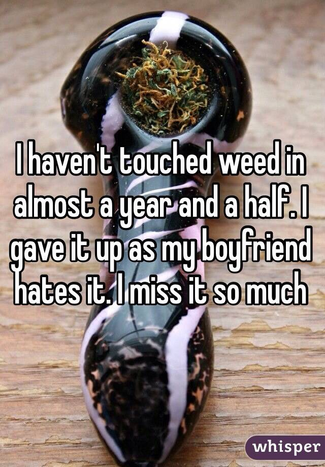 I haven't touched weed in almost a year and a half. I gave it up as my boyfriend hates it. I miss it so much