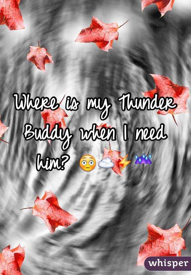 Where is my Thunder Buddy when I need him? 😳☁️⚡️☔️