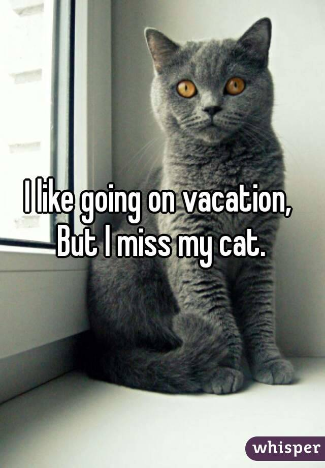 I like going on vacation,  But I miss my cat.