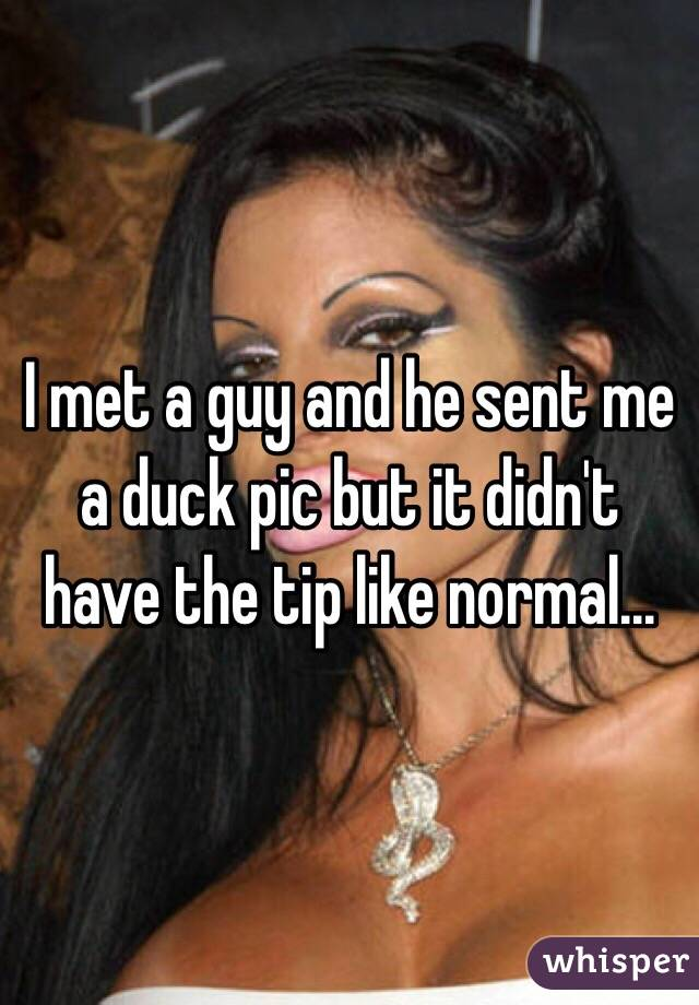 I met a guy and he sent me a duck pic but it didn't have the tip like normal...