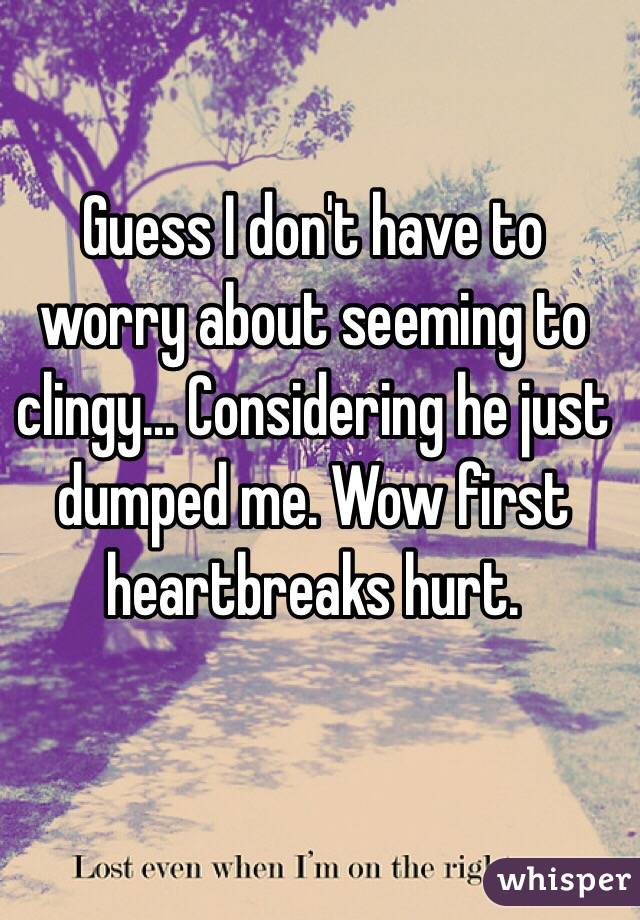 Guess I don't have to worry about seeming to clingy... Considering he just dumped me. Wow first heartbreaks hurt.