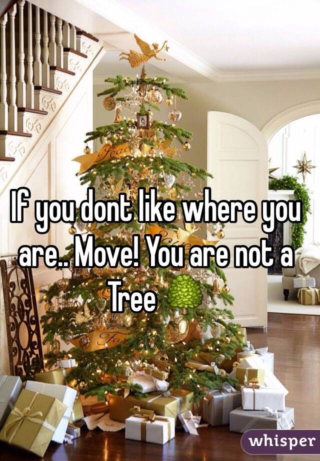 If you dont like where you are.. Move! You are not a Tree 🌳