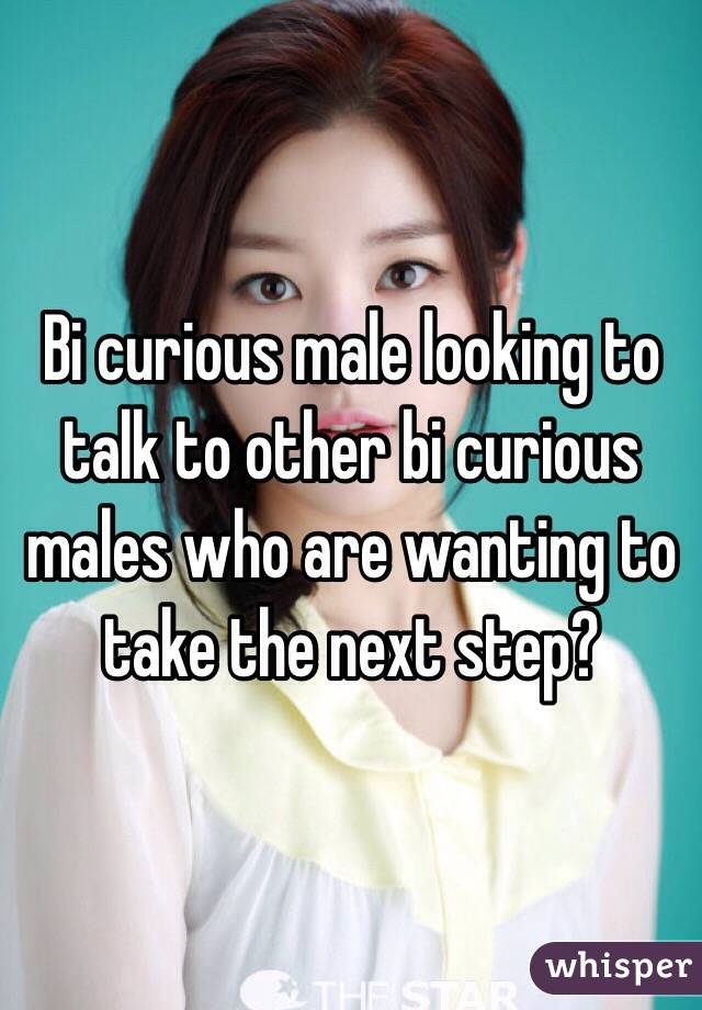 Bi curious male looking to talk to other bi curious males who are wanting to take the next step?