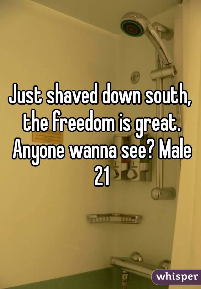 Just shaved down south, the freedom is great. Anyone wanna see? Male 21