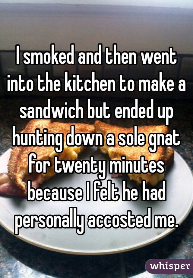 I smoked and then went into the kitchen to make a sandwich but ended up hunting down a sole gnat for twenty minutes because I felt he had personally accosted me.