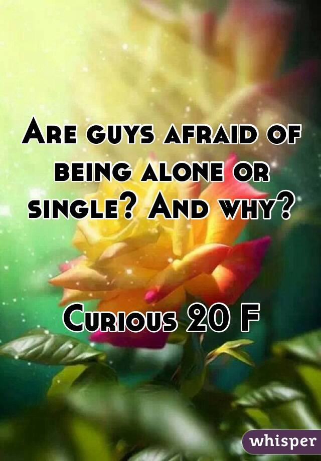 Are guys afraid of being alone or single? And why?   Curious 20 F