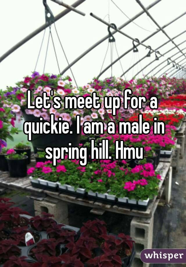 Let's meet up for a quickie. I am a male in spring hill. Hmu