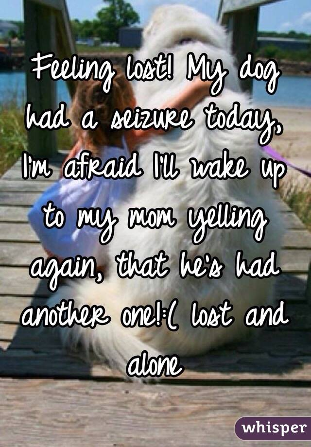 Feeling lost! My dog had a seizure today, I'm afraid I'll wake up to my mom yelling again, that he's had another one!:( lost and alone