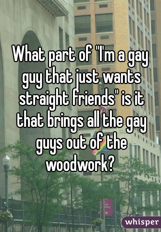 "What part of ""I'm a gay guy that just wants straight friends"" is it that brings all the gay guys out of the woodwork?"