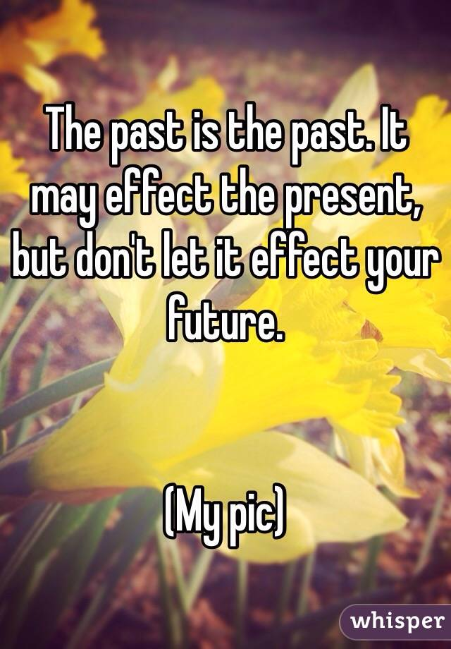 The past is the past. It may effect the present, but don't let it effect your future.    (My pic)