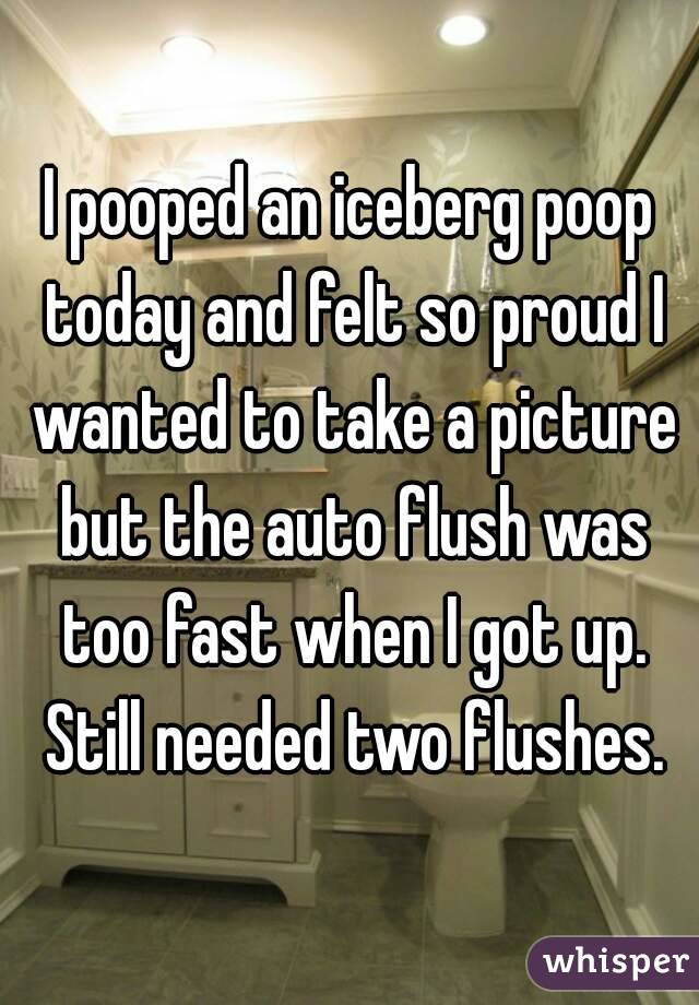 I pooped an iceberg poop today and felt so proud I wanted to take a picture but the auto flush was too fast when I got up. Still needed two flushes.