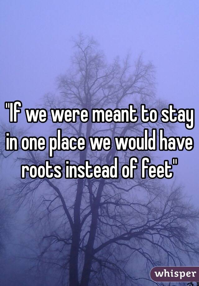 """If we were meant to stay in one place we would have roots instead of feet"""