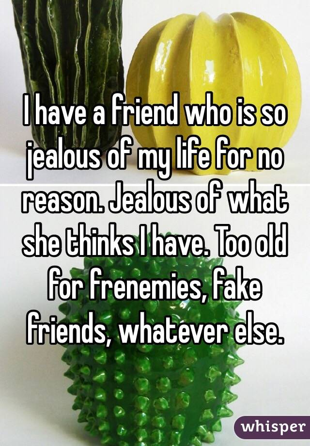 I have a friend who is so jealous of my life for no reason. Jealous of what she thinks I have. Too old for frenemies, fake friends, whatever else.