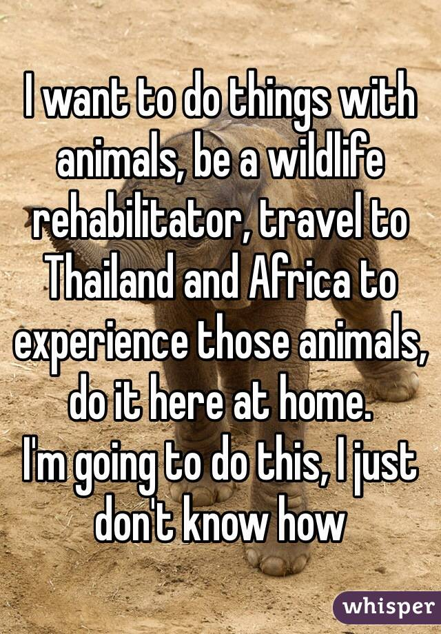 I want to do things with animals, be a wildlife rehabilitator, travel to Thailand and Africa to experience those animals, do it here at home. I'm going to do this, I just don't know how