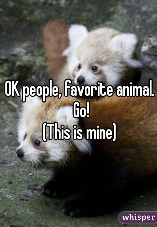OK people, favorite animal. Go! (This is mine)