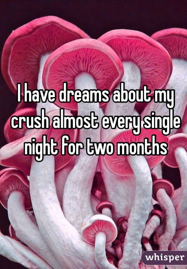 I have dreams about my crush almost every single night for two months