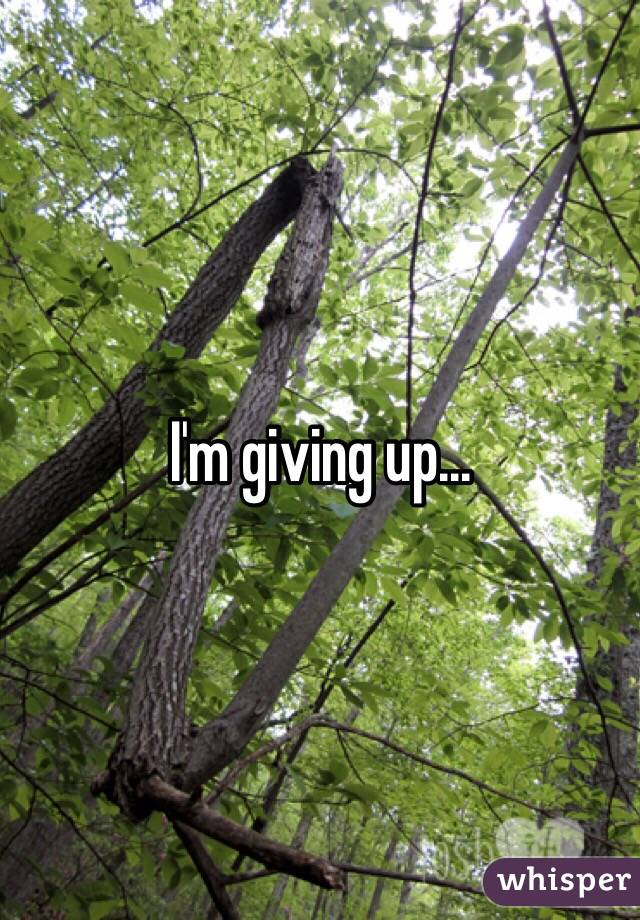 I'm giving up...