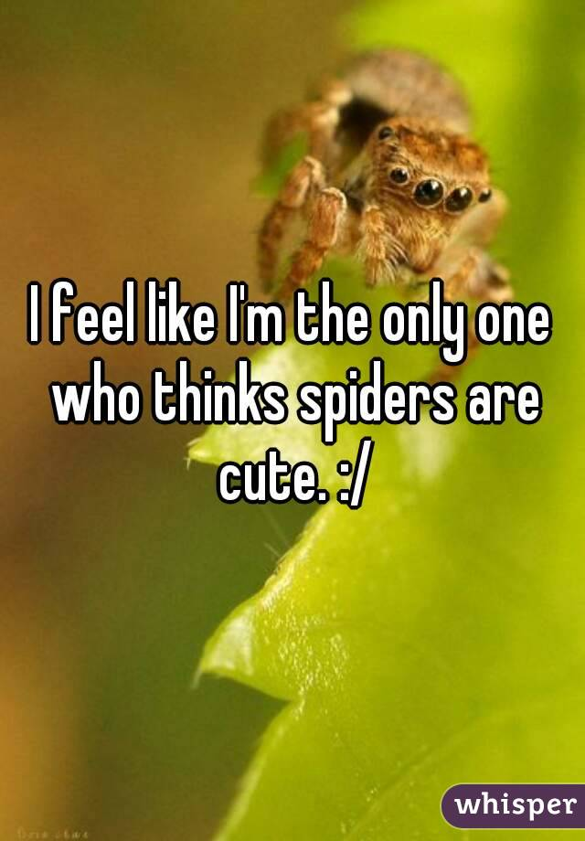 I feel like I'm the only one who thinks spiders are cute. :/