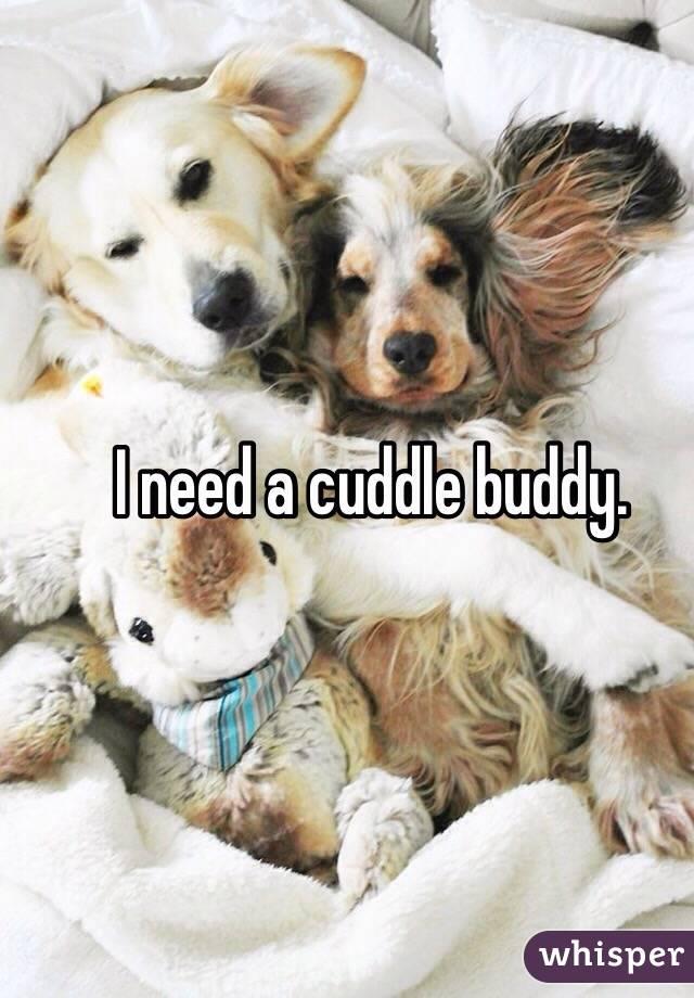 I need a cuddle buddy.