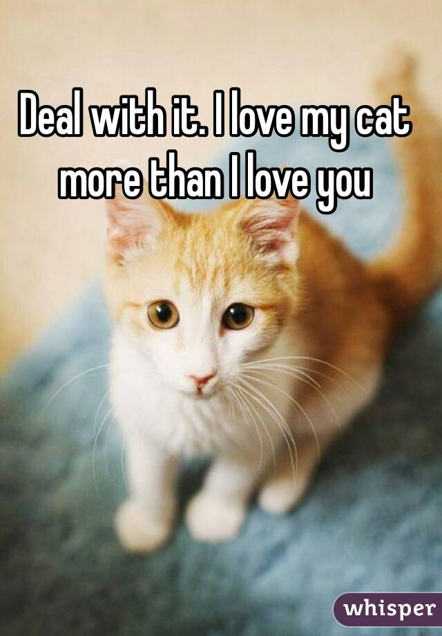 Love You More Than Anything Cat i Love my Cat More Than i Love