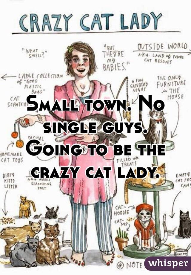 Dating cat lady