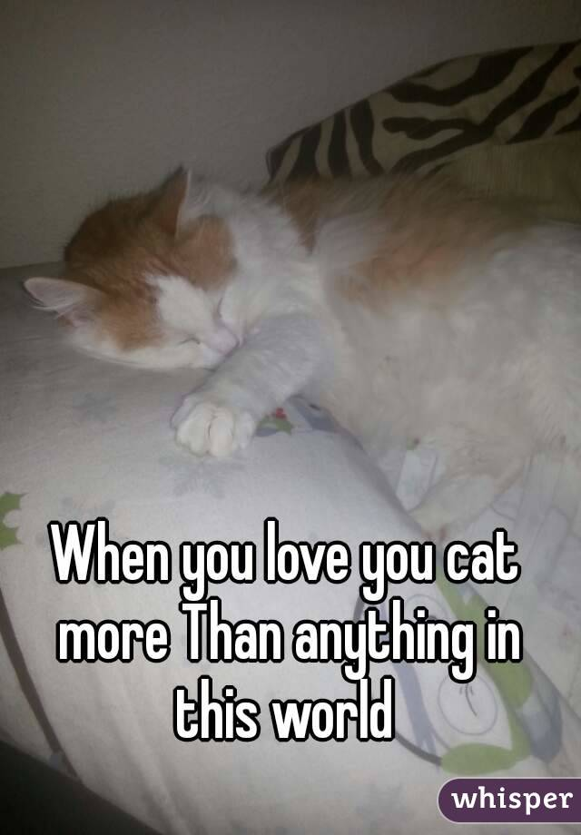 Love You More Than Anything Cat When You Love You Cat More