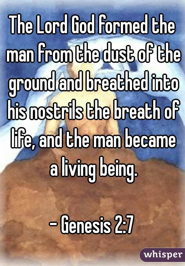 The Lord God formed the man from the dust of the ground ...