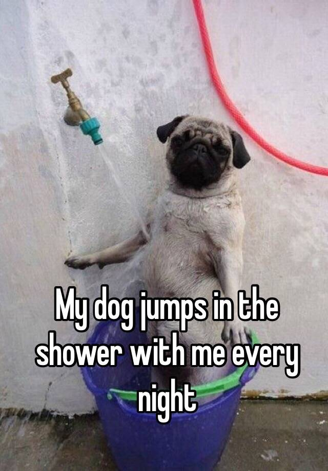 My Dog Jumps In The Shower With Me Every Night