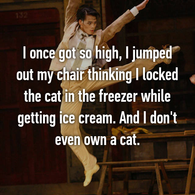 I once got so high, I jumped out my chair thinking I locked the cat in the freezer while getting ice cream. And I don't even own a cat.