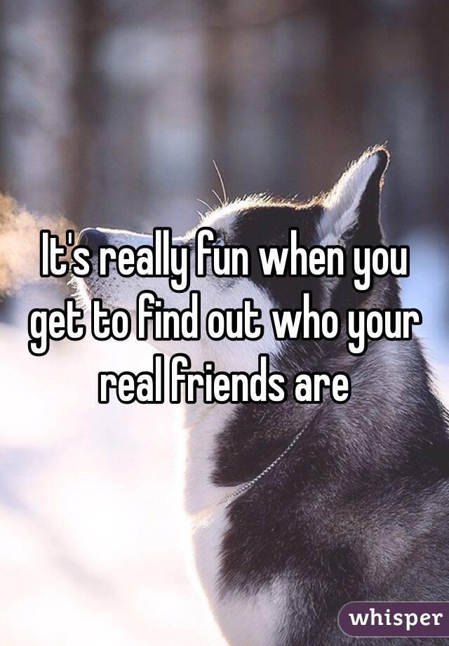 friend finder eskorte real