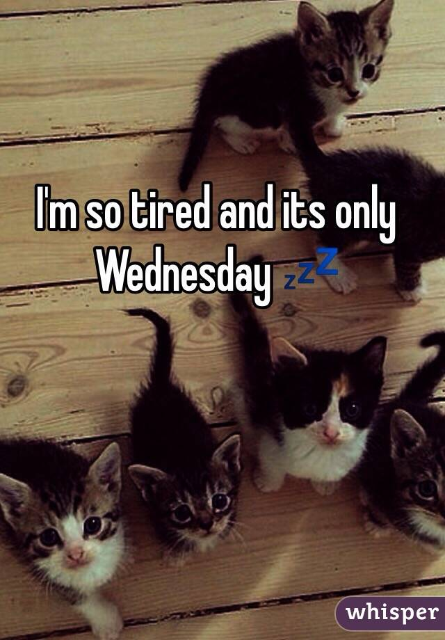 and it&#39-s only Wednesday... - Imgur