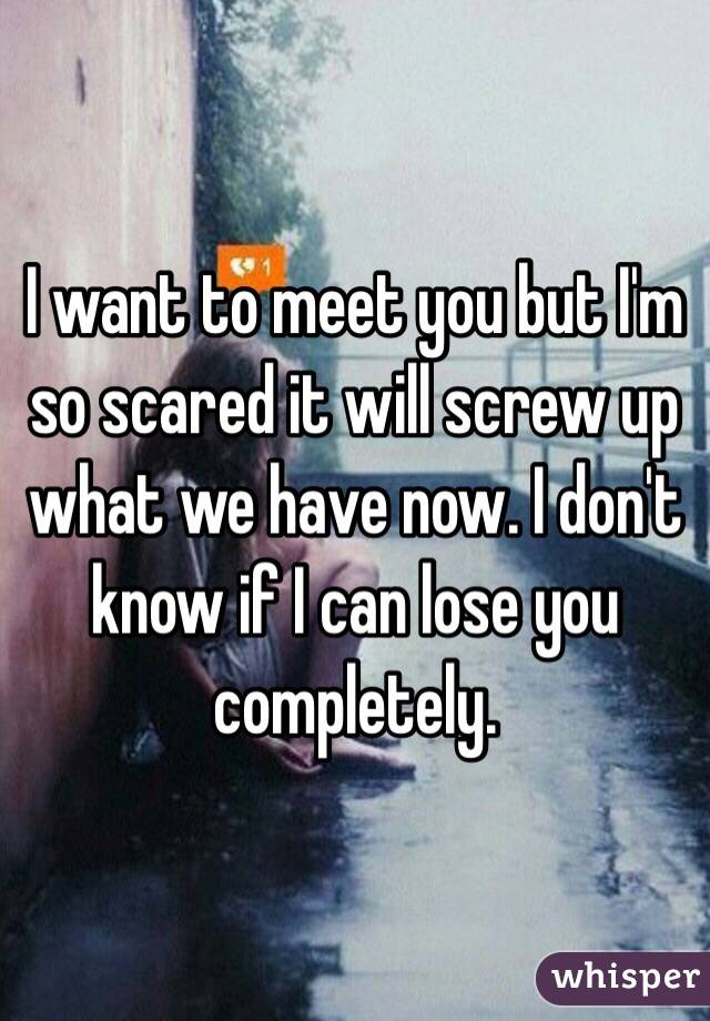 want to meet you but I'm so scared it will screw up what we have