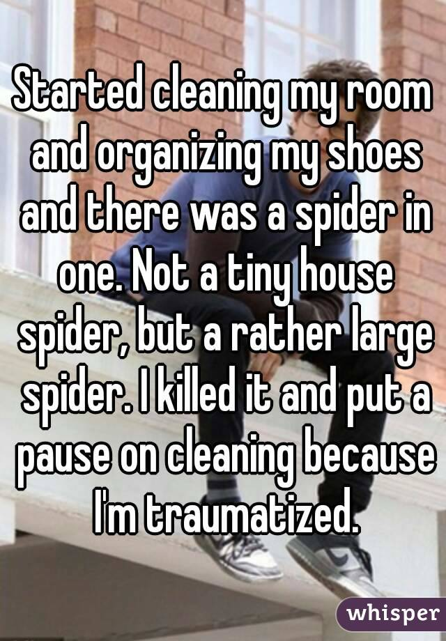 Started cleaning my room and organizing my shoes and there was a spider in one. Not a tiny house spider, but a rather large spider. I killed it and put a pause on cleaning because I'm traumatized.