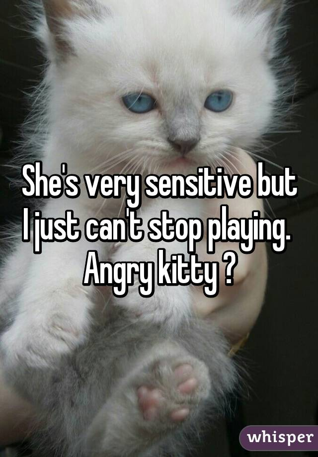 She's very sensitive but I just can't stop playing.  Angry kitty 😾