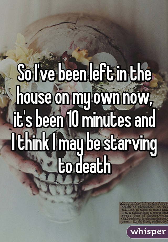 So I've been left in the house on my own now, it's been 10 minutes and I think I may be starving to death