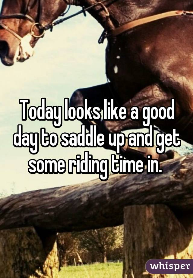 Today looks like a good day to saddle up and get some riding time in.