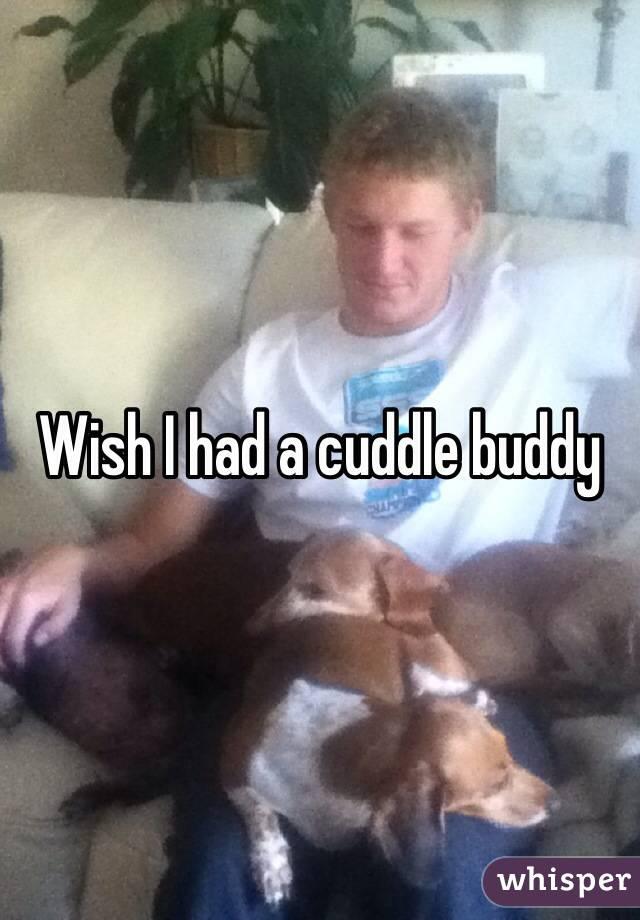 Wish I had a cuddle buddy
