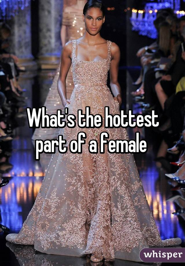 What's the hottest part of a female
