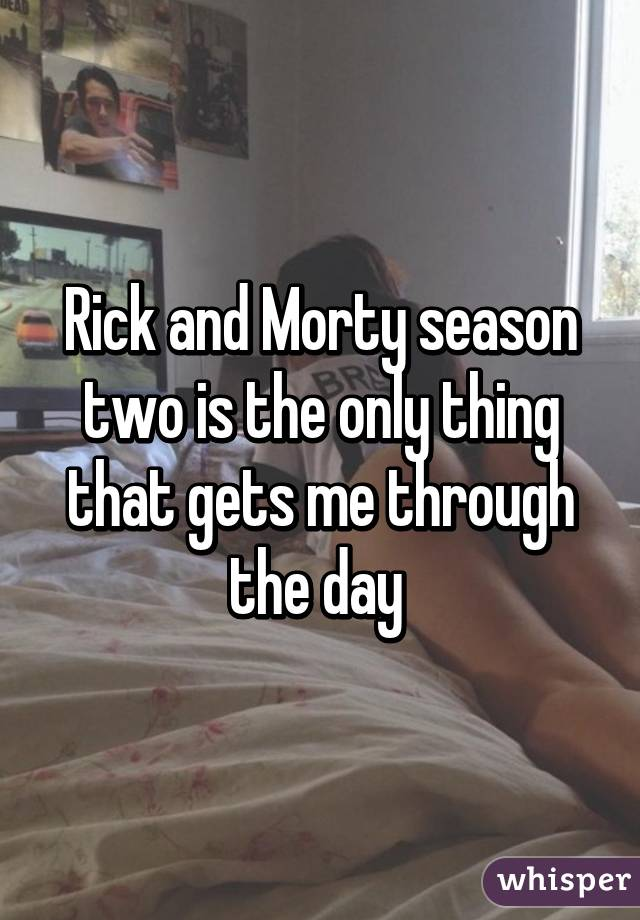 Rick and Morty season two is the only thing that gets me through the day
