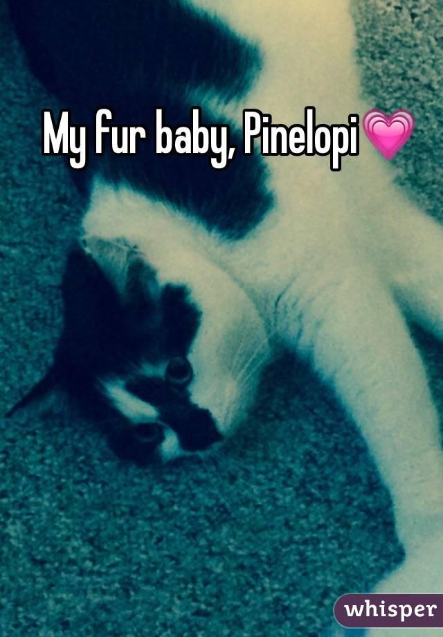 My fur baby, Pinelopi💗