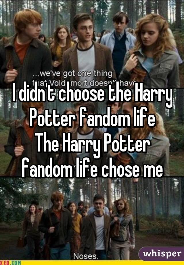 I didn't choose the Harry Potter fandom life The Harry Potter fandom life chose me