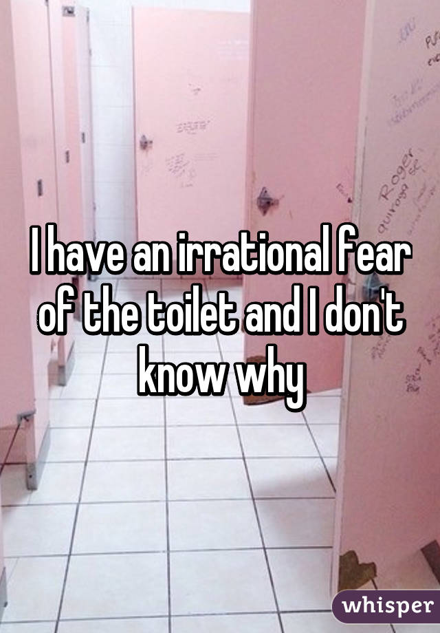 I have an irrational fear of the toilet and I don't know why